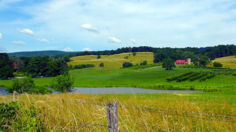 Valley View 500 Acre Farm
