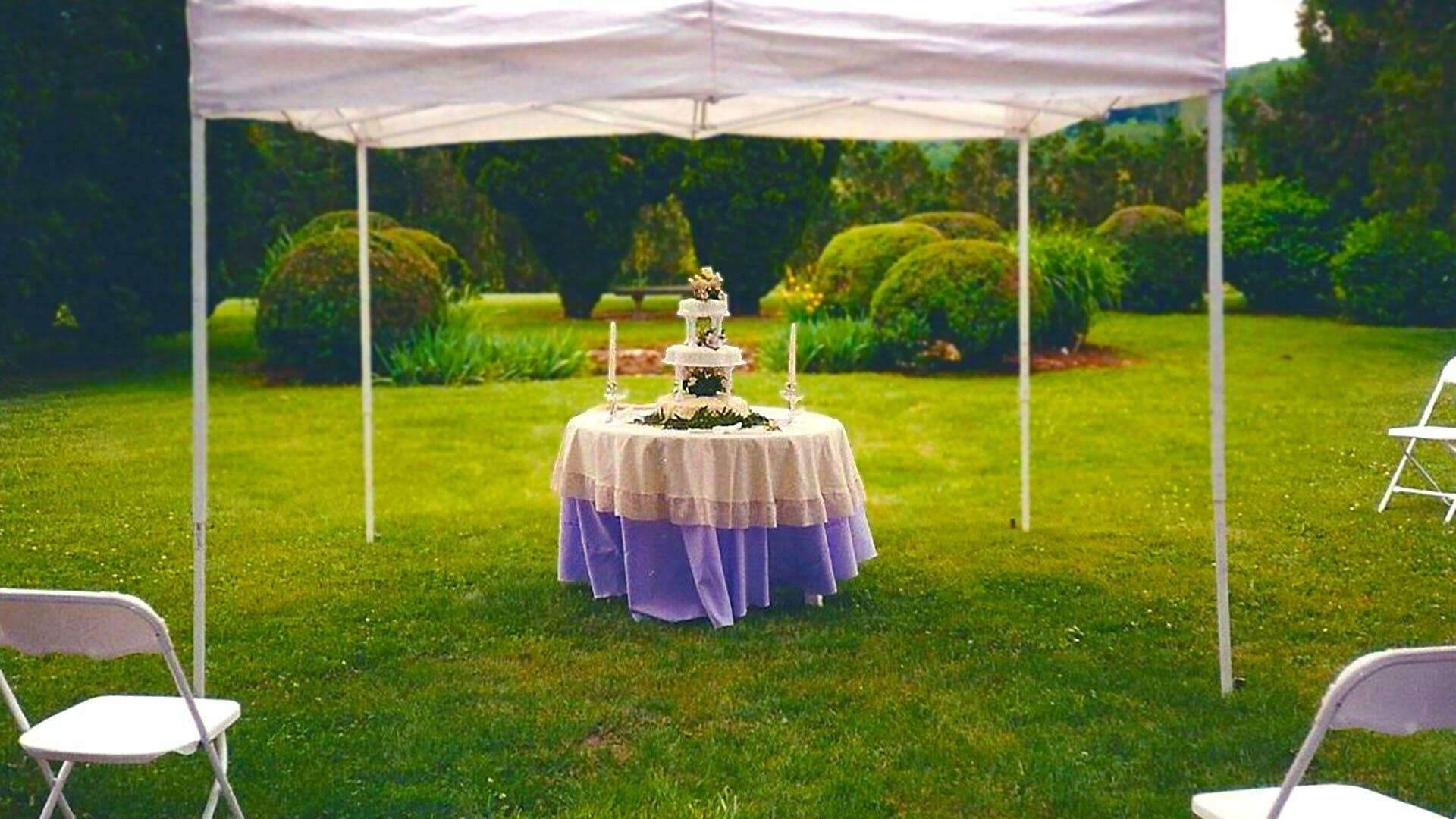 Valley View Farms Gardens wedding cake