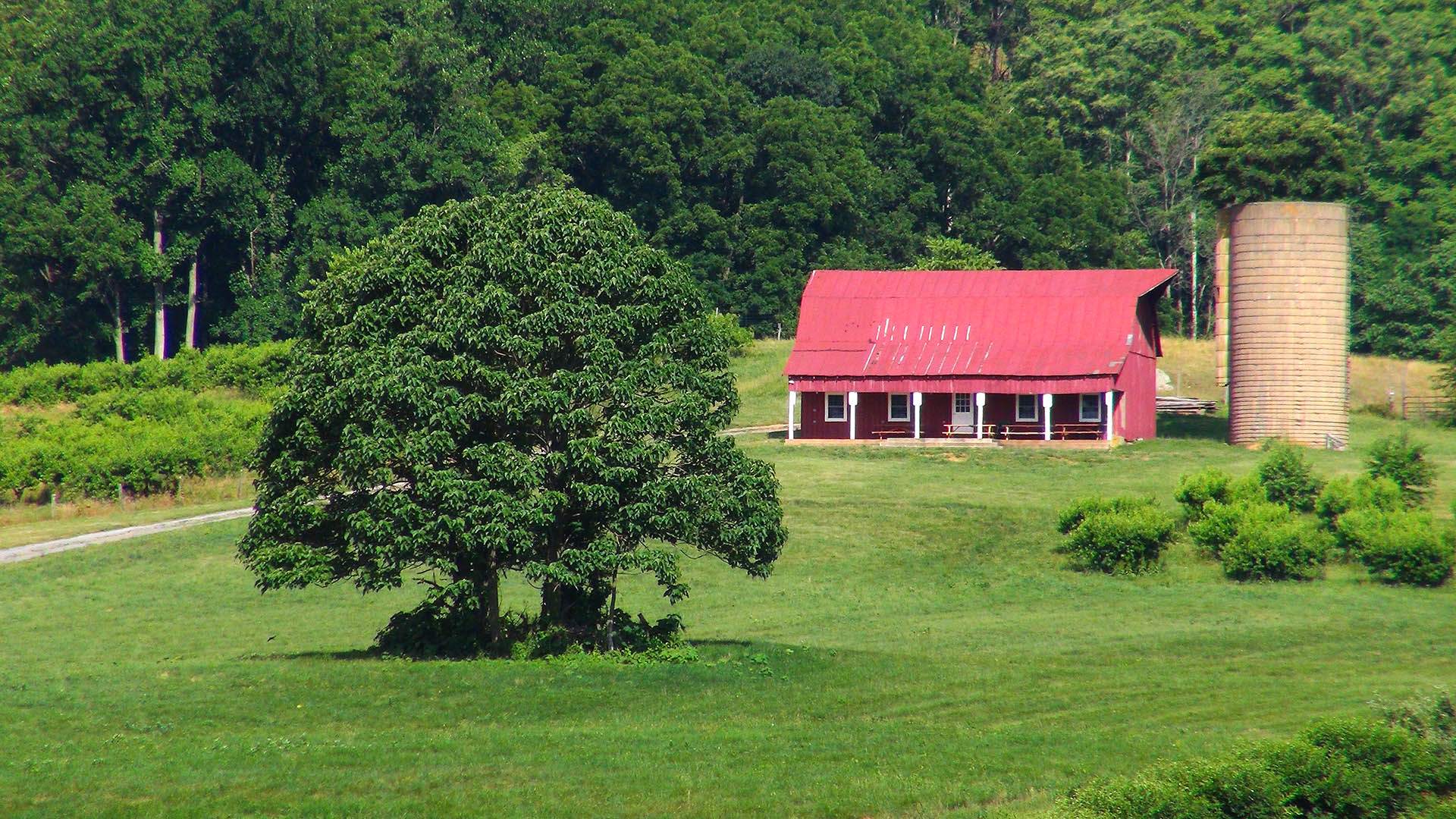 Valley View Farms Red Barn with trees