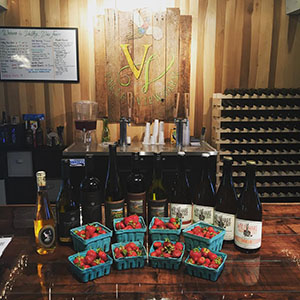 Valley View Farm, Craft Beverages