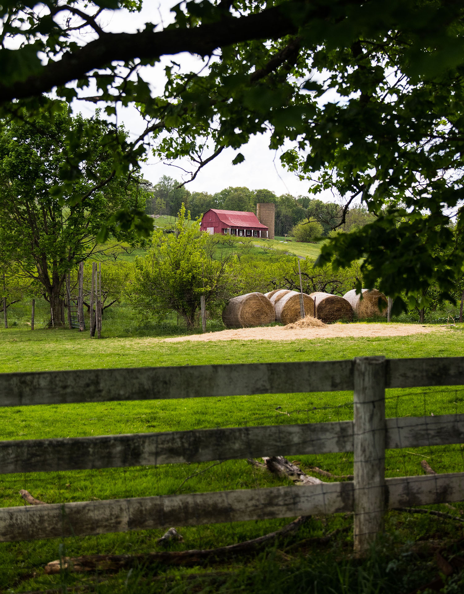 The Farm at Valley View