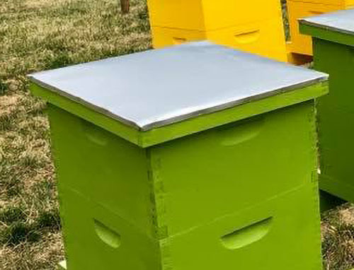 Adopt a NUC (bee nucleus colony), Valley View Farms - Green Wooden Box Hive